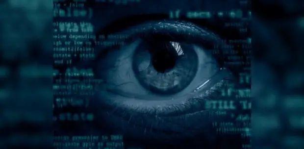 cyber crime volunteers